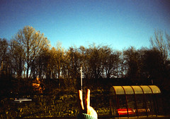 Standard (Back, and to the left) Tags: uk blue trees winter sky film analog crossprocessed yorkshire toycamera lofi rude slide creativecommons expired vivi e6 vsign toycam velvia50 plasticlens c41 sesku vivitaruws expired0699 moorthorpetrainstation flickr:user=backandtotheleft tumblr:user=thediaryofadisappointingman