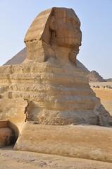 Eternal Egypt (LUMIN8) Tags: sphinx freedom democracy ancient egypt cairo solidarity eternal d300 dictatorsalwaysdie