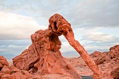 elephant rock (eladio guzman) Tags: statepark landscape nikon desert nevada wideangle redrock lightroom elephantrock sigma1020mm valleyoffirestatepark d300s