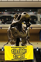 T-Rex Terrible Towel at Pittsburgh International Airport (John Petrick) Tags: pittsburgh dinosaur 50mm14 rex steelers trex gosteelers tyrannosaurusrex pittsburghinternationalairport terribletowel pittsburghsteelers d90 myroncope pittsburghairport airportdinosaur herewegosteelers superbowlxlv welcometopittsburgh pittsburghdinosaur steelerssuperbowl pittsburghairportdinosaur dinosaurwithterribletowel funnysteelerspics terribletoweltrexairport pittsburghterribletowel pittsburghsteelersterribletowel myroncopeterribletowel tyrannosaurusrexbones steelersvsgreenbay trexterribletowel dinosaurterribletowel pittsburghtyrannosaurusrex pittsburghairporttrex funnysteelerpictures theterribletrex trexairportterribletowel