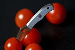 spyderco + tomatoes (MyArtistSoul) Tags: red macro tomatoes deception knife tiny spyderco skyport 100mmmacro 6815 macromonday wltriggers