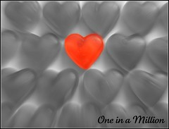 One in a Million. (jacknalfiesmum) Tags: red love grey heart valentine rush million valentines redheart oneinamillion