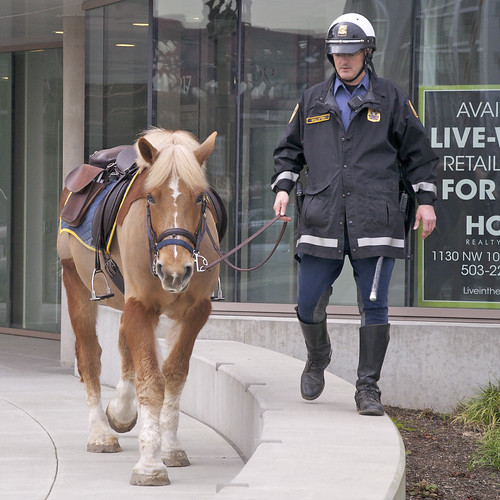 Mounted Patrol ~Officer Wollstein