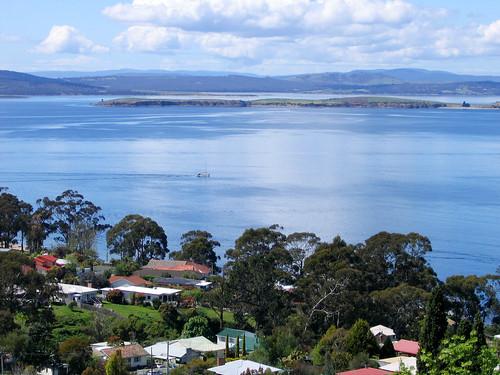 Tasman Blue
