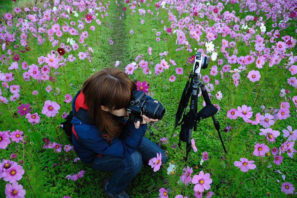 20110206美濃花海_4.jpg
