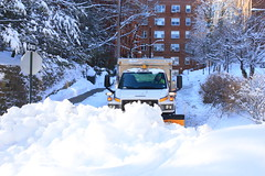 Snow Day (Slow Little Photo) Tags: street trees winter snow postprocessed color building car architecture apartment landscaping branches sidewalk vehicle plow editable paintthis