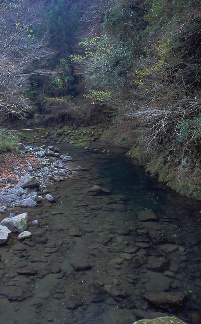 水辺のフリー写真素材