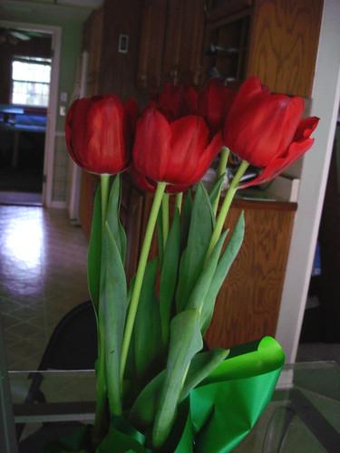 Tiptoe through the tulips