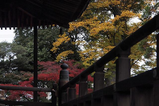 20101114_083900_西大寺