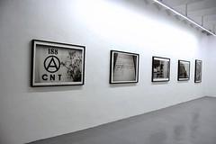 Galería ADN - Democracia / Jose Regina Galindo