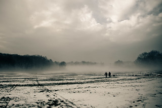 Walkers in a Foggy Field