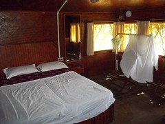 100_0179 (travellersai) Tags: kerala treehouse wayanad teaestate wildboar bandipur chital vythri banasuradam soojiparafalls streamvalleyresorts