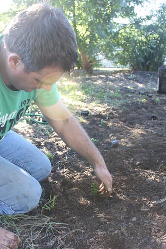 Tim gardening