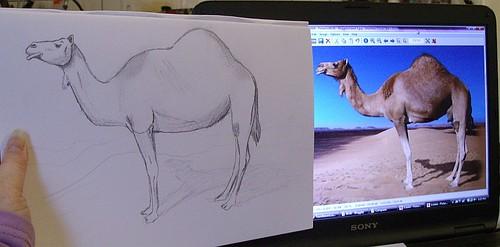 sketch next to original