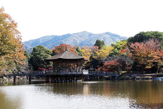 20101116_113745_奈良公園_浮見堂