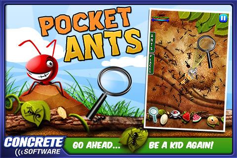 pocket-ants