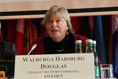 Habsburg Douglas chairs human rights committee meeting (oscepa) Tags: algeria israel tunisia egypt middleeast belarus humanrights libya immigration hofburg osceparliamentaryassembly wintermeeting2011