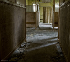 who's there? (moggierocket) Tags: uk shadow abandoned hospital decay interior empty room atmosphere creepy spooky westpark curtains behind division dormitory decrepit flaking asylum chiaroscuro derelict abandonment entering fallingapart absence apprehensive