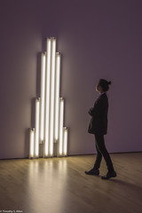 Admiring (allentimothy1947) Tags: art people places sfmoma sanfrancisco buildings modern museum dan flavin