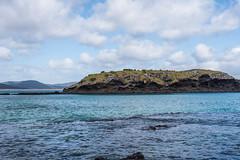Spirits Bay Beach-4