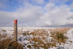 Nationalpark Eifel (ILikePhotos!) Tags: schnee winter snow grass sunshine clouds germany 100v deutschland nationalpark nikon himmel eifel d200 landschaft wandern sonnenschein nikond200 wegmarkierung nationalparkeifel dreibornerhochfläche tamronaf1750mm28xrdiii