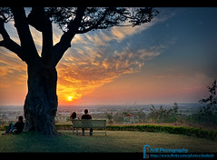 It's Part Of Life (bnilesh) Tags: life sunset india tree garden solitude alone lovers indore iim sunsetpoint