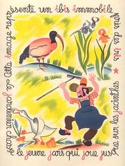 oiseauxfleurs p5