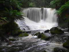 Horseshoe Falls (VernsPics) Tags: park horse field shoe waterfall mt walk scenic scene falls national short views tasmania horseshoe bestofaustralia