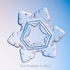 SC_6943 (Pam Eveleigh) Tags: snowflake winter snow cold macro ice nature weather snowflakes crystals crystal micro transparent pure snowcrystal