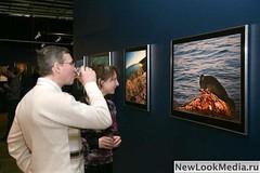 Фотовыставка Ольги Каменской