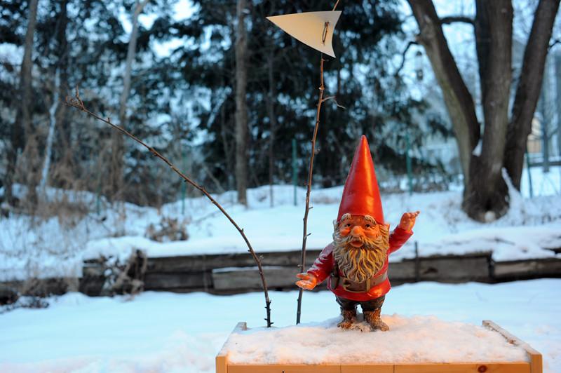 Gnome 01