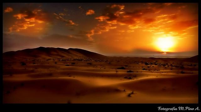 Magia en el desierto...