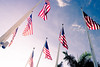 America / American Flags (Fabi Fliervoet) Tags: park usa holiday america photography florida miami flag country stock thenetherlands nopeople patriotic flags national processing tropical bayside patriot fabi nationalistic lightroom bayfront northamerican fabifliervoet fliervoet