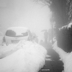 Velbert im Winter (city/human/life) Tags: auto schnee winter people blackandwhite bw mist snow cold cars wet car rain fog germany walking deutschland grey cool haze nikon melting afternoon nebel path candid gray grain january newyear schild hund processing sw parked autos kalt vignette bergischesland baum velbert neujahr regen wetter januar chl dense schneeberg spaziergang treatment mensch brgersteig walkingthedog regenschirm waschkche leine schneefall nebelig hecke 2011 d90 feucht tauwetter schwarzweis schneemassen nikond90 kreismettmann cityhumanlife langenhorsterstrasse velbertmitte