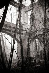 In the mill (Ysalis.net) Tags: urban mill abandoned rural 35mm moulin ruine abandon urbanexploration 5d fullframe exploration abandonned urbex urbaine abandonné rurex urbanurbex