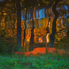 Le vieux cano rouge...!!! (7/9) (Denis Collette...!!!) Tags: trees wild lake canada reflection tree art reflections lac reflet arbres qubec impressions arbre reflets photosafari impression impressionist sauvages sauvage philosophie impressionists wildlake impressionistes impressionniste img8259 notredamedemontauban deniscollette mkinac lacsauvage photossafari