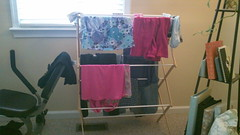 Indoor Drying rack saves money.