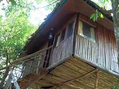 100_0190 (travellersai) Tags: kerala treehouse wayanad teaestate wildboar bandipur chital vythri banasuradam soojiparafalls streamvalleyresorts