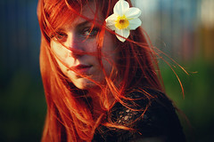(Noukka Signe) Tags: light red summer portrait sun girl sunshine hair outside flow shadows warmth redhead daffodil signe noukka