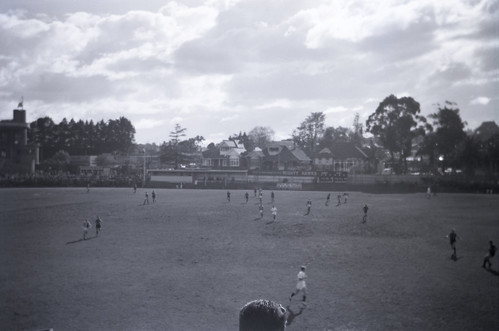 196104  115 Glenferrie Oval