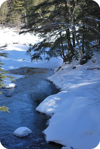 Ausable River West
