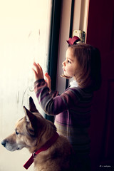 """We only part to meet again."" (Rebecca812) Tags: door hinge family dog pet cute window glass girl beautiful vertical togetherness kid movement furry waiting child dress sweet drawing daughter foggy canine condensation ribbon goodbye waving oneperson wistful windowlight norwegianelkhound lookingout foggedup stormdoor hairribbon domesticatedanimal femalechild peopleanddogs canon5dmarkii whatgettywants familygetty2010 rebecca812 familygetty2011"