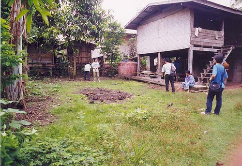 Survey at Ban Pone, Phen District, Udorn Thani Province, NE Thailand, 1999