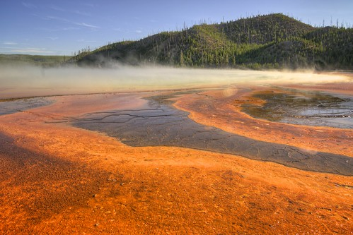 Orange Bacterial Mat of Grand Prismatic Spring