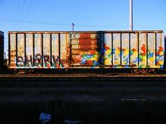 Shark & Hot Carl (KickPushPaint aka Sk8Hamburger) Tags: train painting graffiti shark paint tag dna boxcar piece hotcarl nr tagging kts freight ther grainer kmv peninsulaterminal dnak