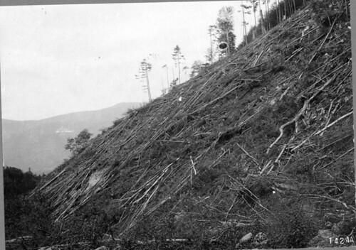 The legacy of the Weeks Act is shown in these two photos showing the same landscape on the White Mountain National Forest but a century apart.  This photo was taken in 1910 and shows a logged-over hillside.