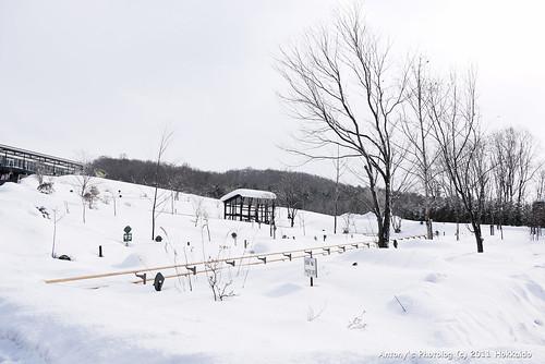 旭川動物園-52