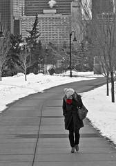 Wind Chilled (Matthew P Sharp) Tags: street winter urban cold calgary canon outdoors march wind path streetphotography korean alberta 7d 70200 llens windchill