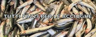 TUTTI_PAZZI_PER_LE_ACCIUGHE