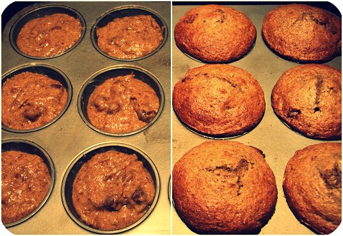 pb muffins in pan